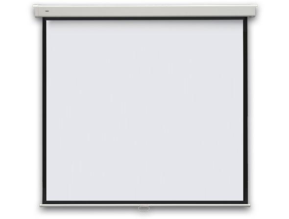 PROFI manual projection screen